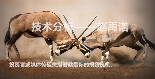 http://www.sheepsco.net/mp/article/1336538