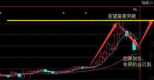 国产芯片第一龙头跌至3元,大股东173万股增持,狗年赶超紫光国芯