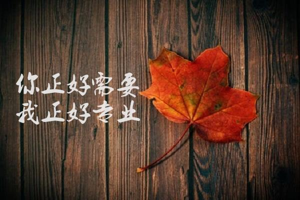 http://images.shichai.cnfol.com/article/201805/16/1526442674378373.jpg