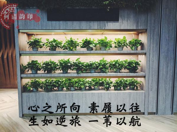 http://www.miaochunyu.com/mp/article/1354177
