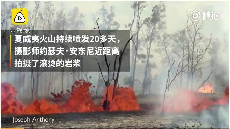 夏威夷火山持续爆发:岩浆在树林里翻滚,公鸡仍在打鸣