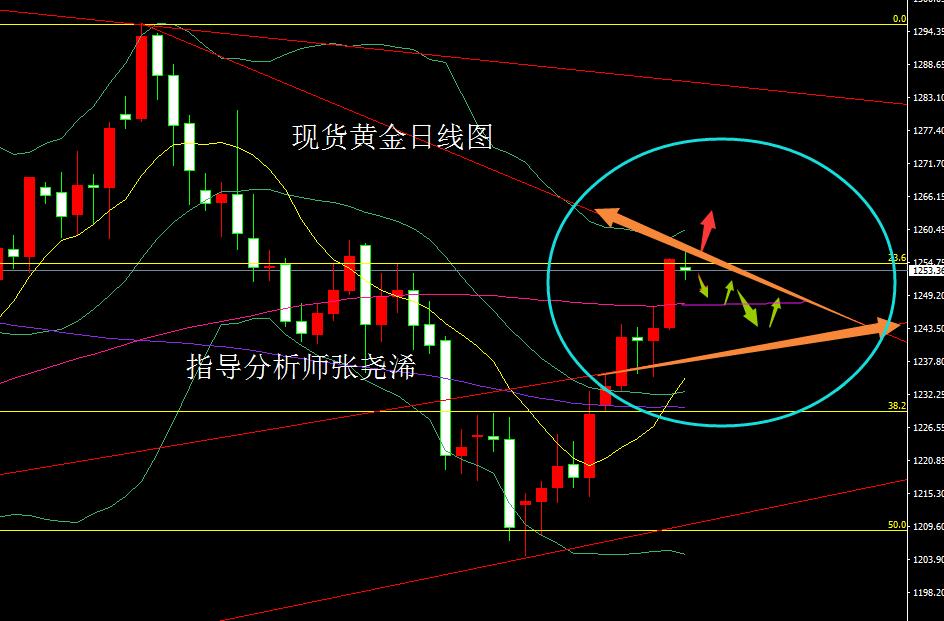 张尧浠:黄金暂软不改看涨之势、原油反跌有再下探之意