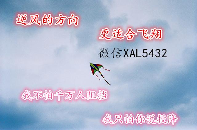 有广告7621763075724113_副本.jpg