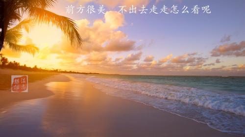 t012a33b874eed87cd1_副本.jpg