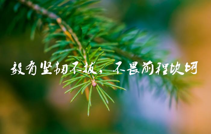 blog_attach_15446156823571.jpg
